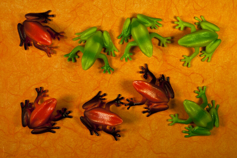 Eight Frogs