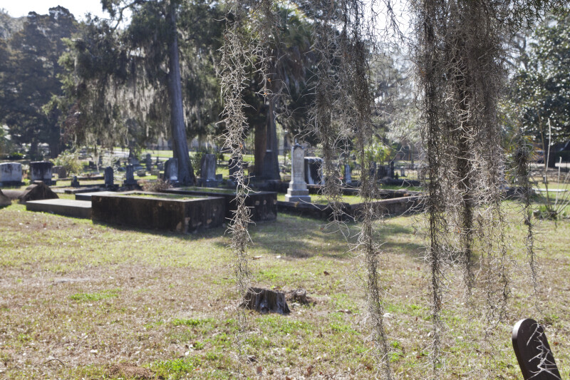 Elevated Cemetery Plot, and Plots Bordered with a Curb