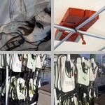 Emergency Preparation photographs