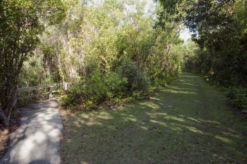 Entrance to Boardwalk and Shaded, Grass Trail