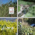 Environmental Science photographs