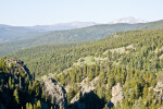 Evergreen Forest With View of Rocky Mountains