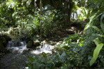 Fairchild Waterfalls