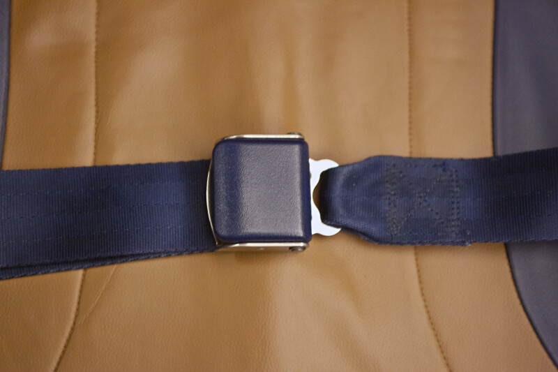Fastened Seat Belt on a Leather Seat