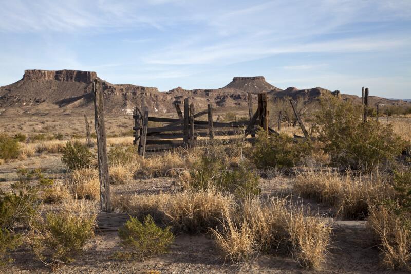 Fence Remnants