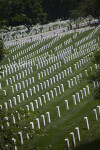 Field of Headstones