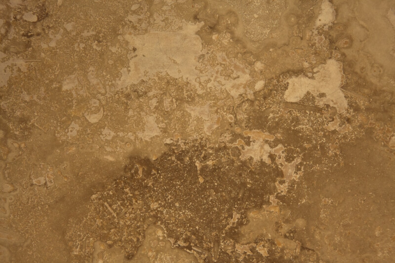 Filled Travertine Tile