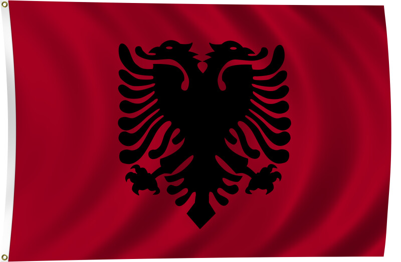 Flag of Albania, 2011