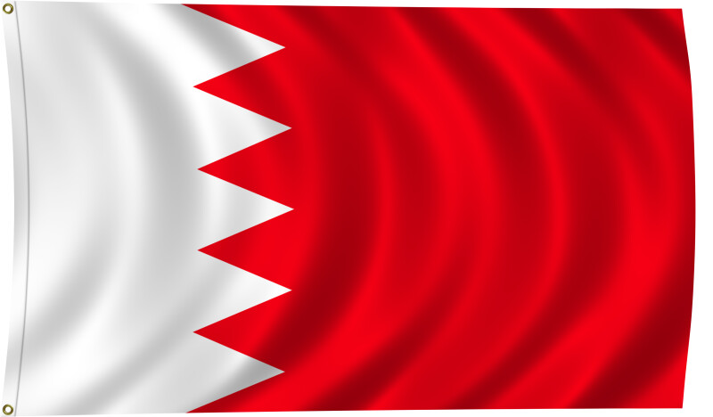 Flag of Bahrain, 2011