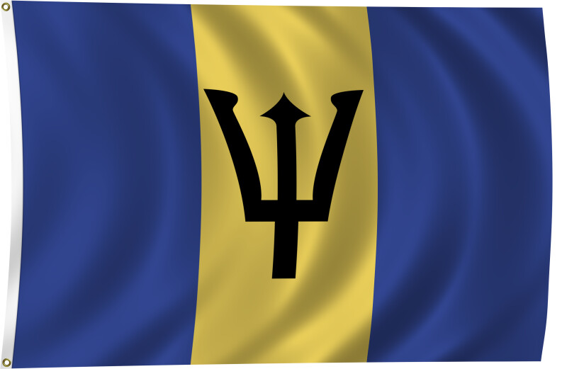 Flag of Barbados, 2011