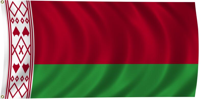 Flag of Belarus, 2011