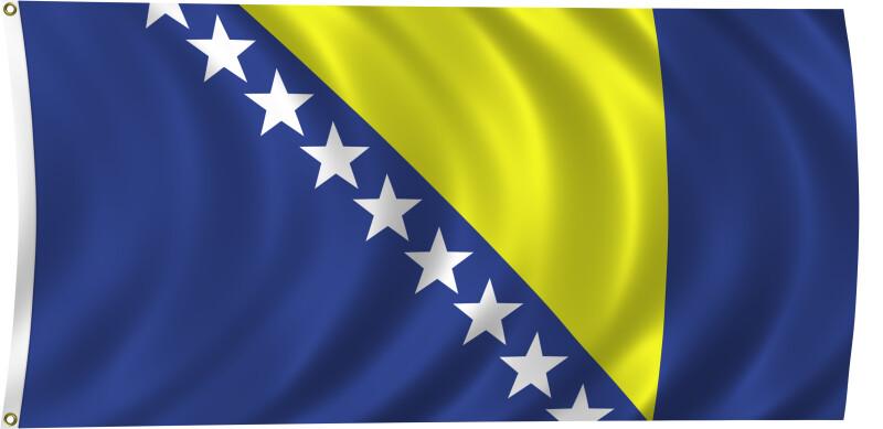 Flag of Bosnia and Herzegovina, 2011