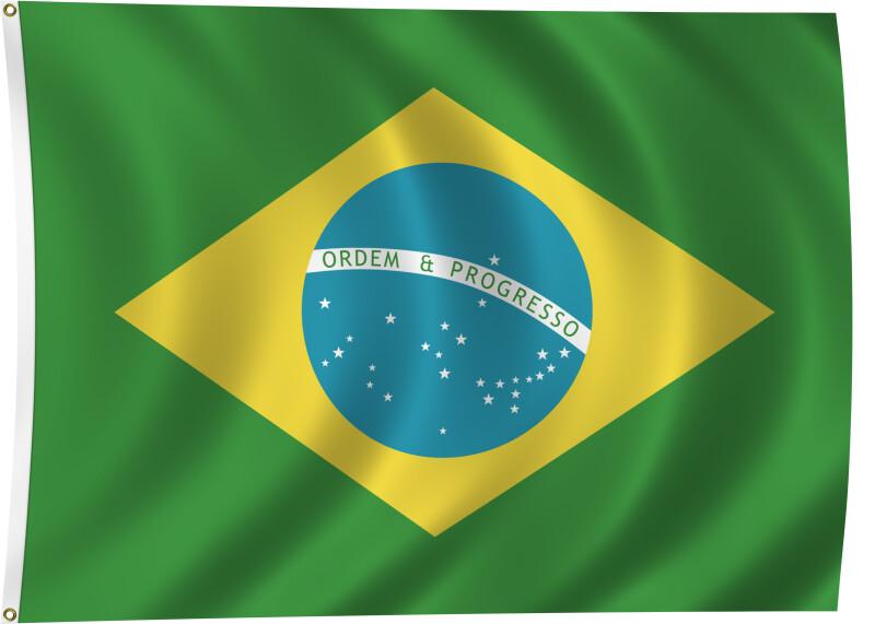 Flag of Brazil, 1889-Present