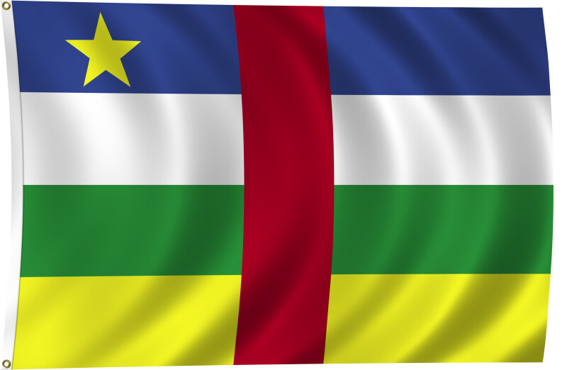 Flag of Central African Republic, 2011