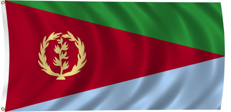 Flag of Eritrea, 2011
