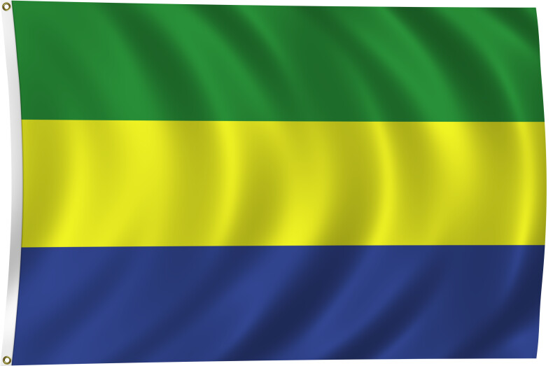 Flag of Gabon, 2011