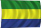 Flag of Gabon, 2011