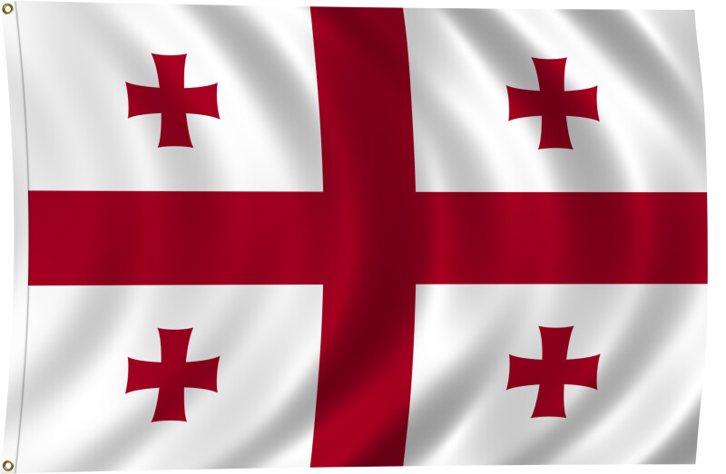 Flag of Georgia, 2011