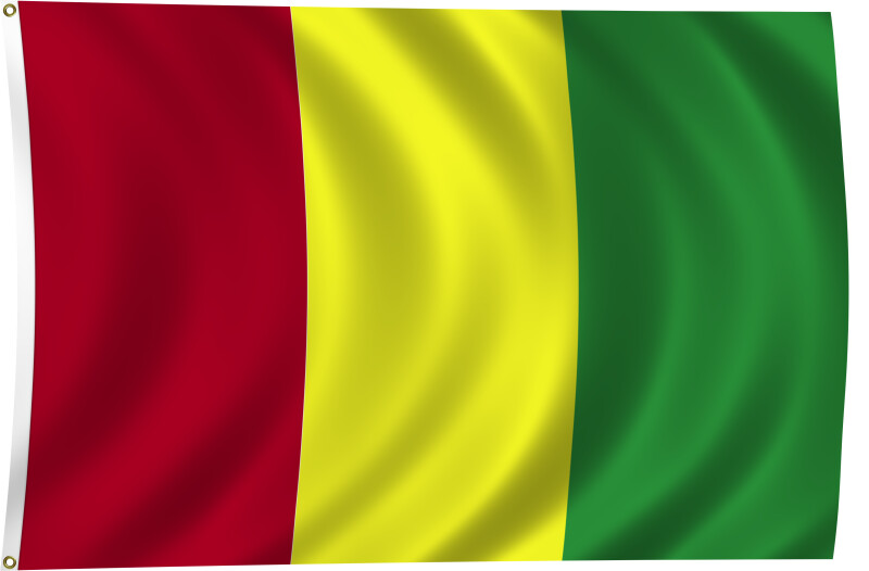 Flag of Guinea, 2011