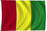 Flag of Guinea, 2011