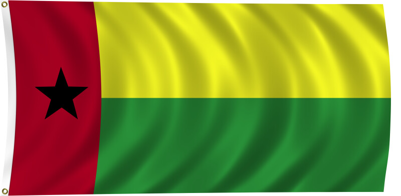 Flag of Guinea-Bissau, 2011