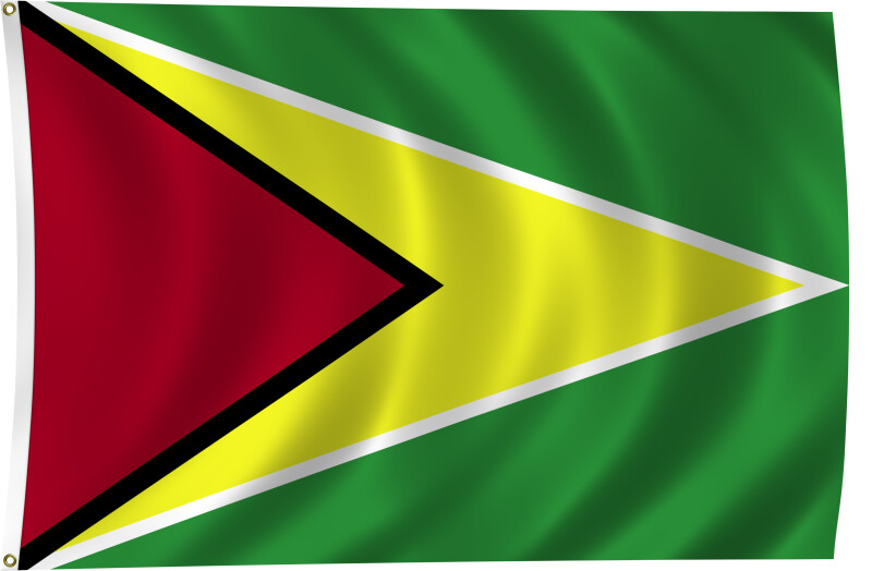 Flag of Guyana, 2011