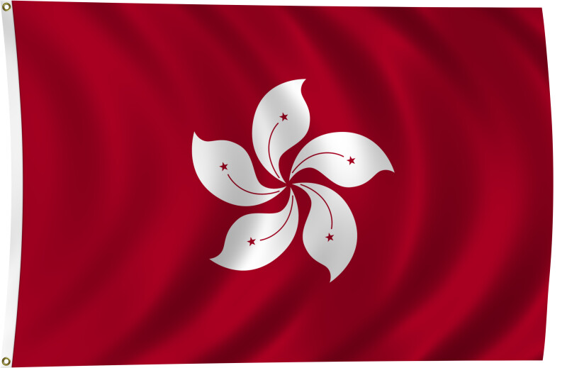 Flag of Hong Kong, 2011