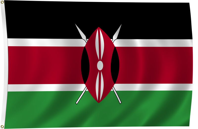 Flag of Kenya, 2011