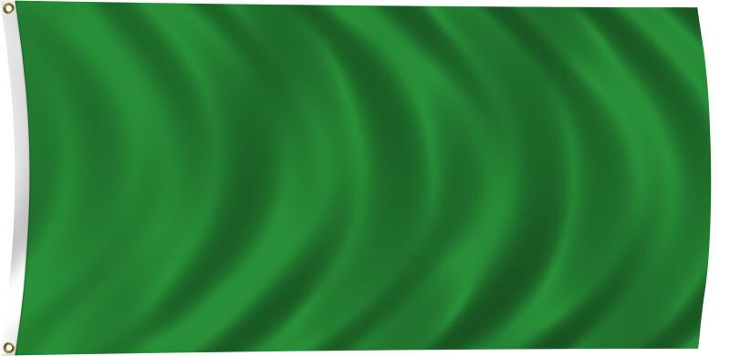Flag of Libya, 2011