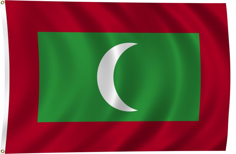 Flag of Maldives, 2011