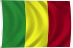 Flag of Mali, 2011