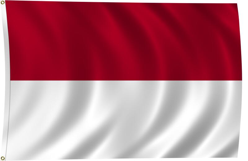 Flag of Monaco, 2011