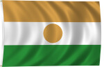 Flag of Niger, 2011