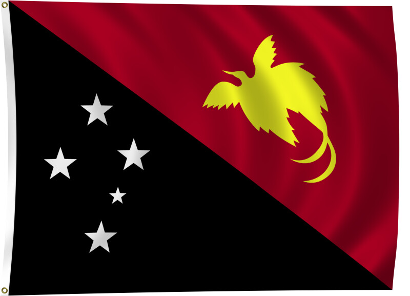 Flag of Papua New Guinea, 2011