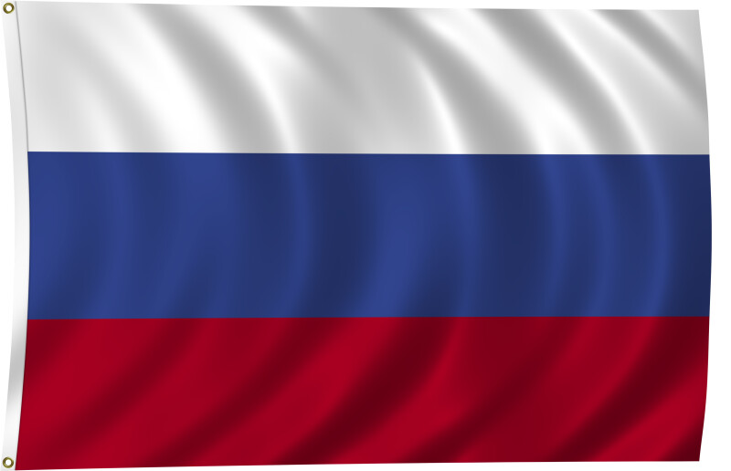 Flag of Russia, 2011