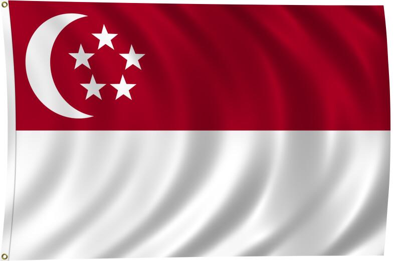 Flag of Singapore, 2011