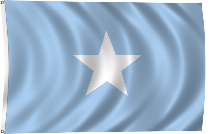 Flag of Somalia, 2011