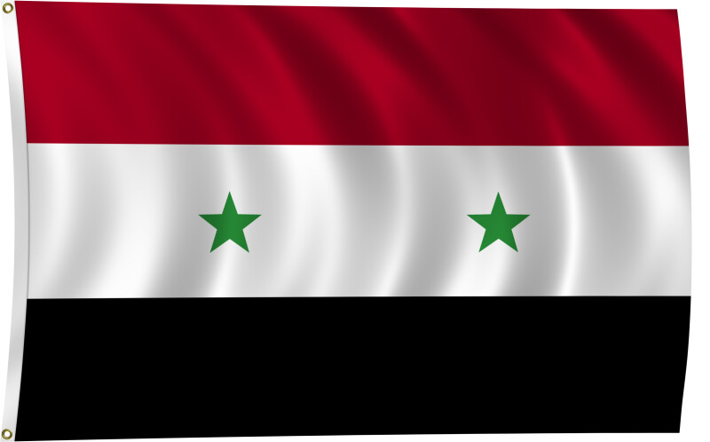 Flag of Syria, 2011