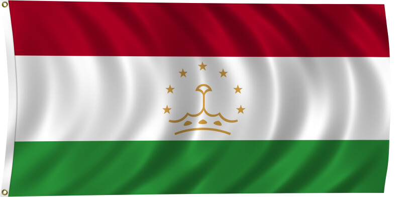 Flag of Tajikistan, 2011