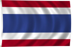 Flag of Thailand, 2011