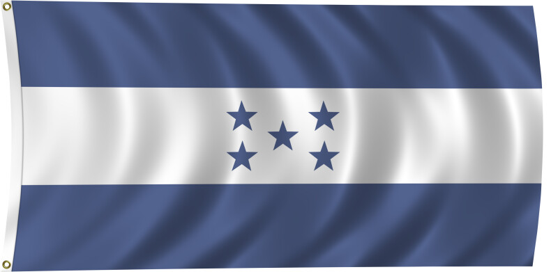 Flag of the Federated States of Micronesia, 2011