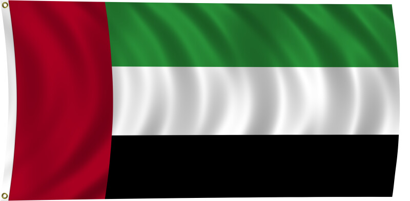 Flag of the United Arab Emirates, 2011