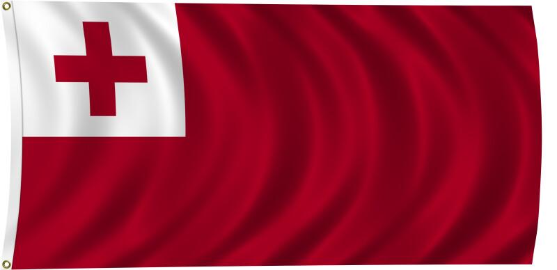 Flag of Tonga, 2011