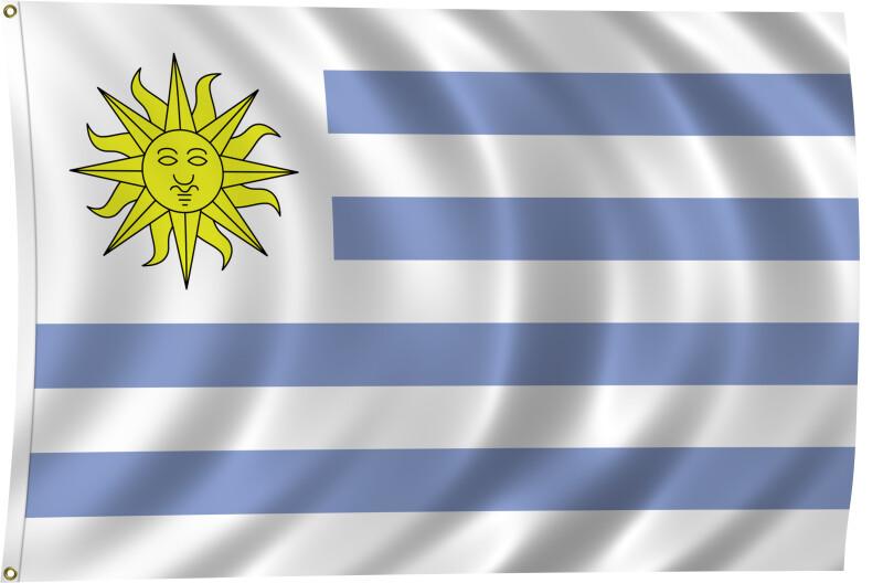 Flag of Uruguay, 2011