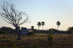 Flamingo Campground Landscape