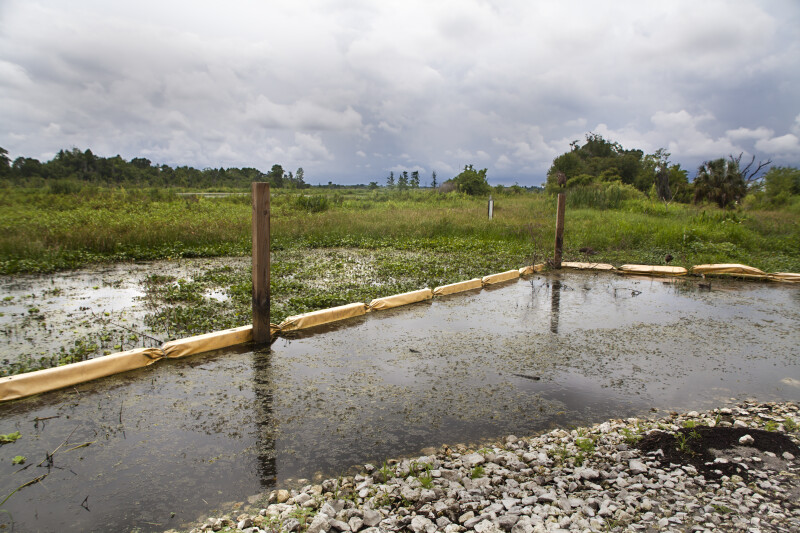 Floating Barriers Used for Restoring Wetlands at Circle B Bar Reserve