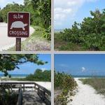 Florida Parks photographs