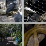 Florida Zoos, Aquariums, & Aviaries photographs