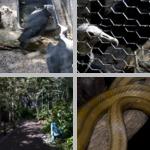 Florida Zoos, Aquariums, & Aviaries photographs