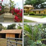 Florida photographs